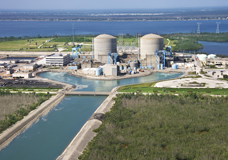 Nuclear energy: Information Services & Consulting